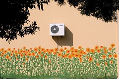 Air-conditioned (marc do) Tags: sardegna flowers school italy flores fleurs fun md funny europa europe humorous do italia sardinia joke humor blumen humour escuelas lustig escuela schools escola fiori ironic scherzo engraado italie cagliari sardinien bloemen spass cole schule divertente itali scuola sardaigne pret diversion witz escolas divertido broma drle divertimento schulen grap coles cerdena ironico scuole ironique sardenha sardini umoristico plaisanterie scholen ironisch humoristique marcdo humoristico gracejo marcde