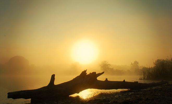 Misty dawn 1
