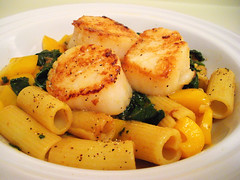 pastascallop