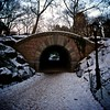The Tunnel. (Pedro Silvares) Tags: street camera nyc winter usa snow newyork pond centralpark unitedstatesofamerica sigma nikond80 1020mmf456 inscopearch