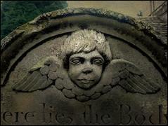 Angel Eyes (Davy Ellis) Tags: cemetery graveyard angel headstone northumberland cherub gravestone churchyard standrews hartburn