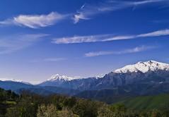 montagnes enneiges (cremona daniel) Tags: france corse neige arbre vacance montagnes