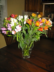 Flowers from Heather (ZanyShani) Tags: flowers heather present unexpected thankyoupresent