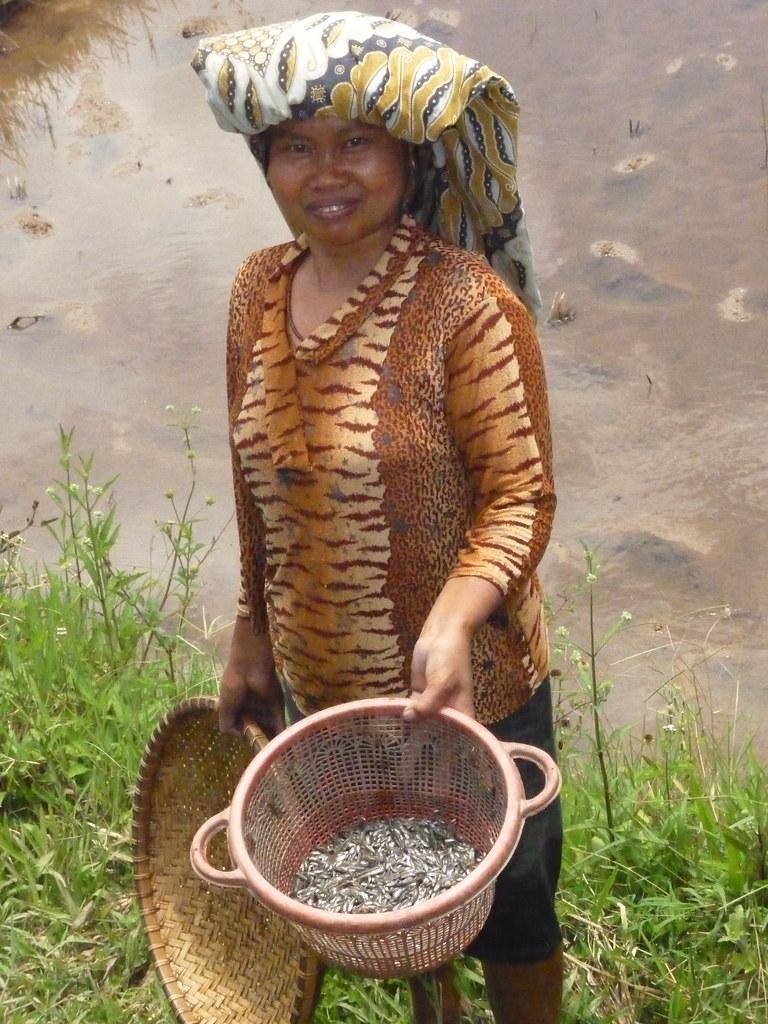 Pays Toraja Sud (47)