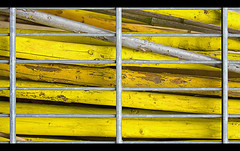 Super mikado (xollob58) Tags: abstract yellow bars bamboo diagonal gelb mikado pickupsticks gitter abstrakt bambus woodenpoles holzstangen