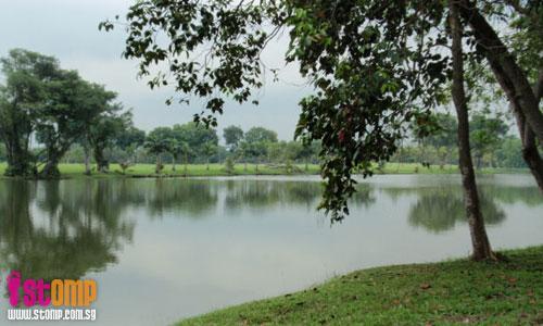 Nature at its best and worst at Jurong Lake