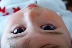 . (Lorenzo.) Tags: occhi colori ritratto viso siria bimba capelli farfalle fiocchi nipote bamina taccio lorenzotaccioli