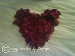 MY HEART (jooriya) Tags: love heart