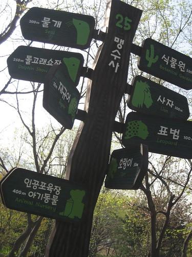 At Seoul Zoo