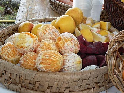 fruits à jus.jpg