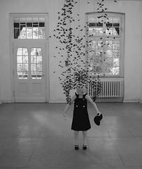 (derpunk) Tags: windows light shadow blackandwhite bw white black art girl puppet installation flies artoll