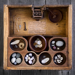 cash drawer (sue.h) Tags: wood old shells leaves coral keys coins timber antique feathers nuts pebbles cash drawer compartments
