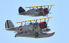 2009 Chino Airshow 5/16 (Knoxley) Tags: world david army nikon war wwii navy airshow val sabre planes marines lightning c17 globemaster mitchell mustang wildcat russian usaf zero 2009 warbird fm2 warthog t6 chino a10 hellcat 80200mm thunderbolt p51 bearcat grumman f86 b25 sbd d300 t33 mig15 p40 p47 f7f p38 t28 2470mm warhawk 516 f4u air aircorps skyraider f6f f8f silver sea show fame heritage flight walker wing wings duantless planes fury yak3 knoxley