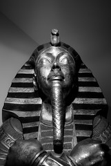 Tut, keeper of movies (Lens Capricious) Tags: egypt sarcophagus mummy tut
