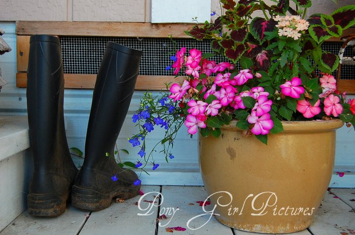 Muck Boots and Flowers