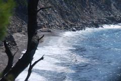 The wind was blowing heavily that day (venetia koussia) Tags: blue seagulls swimming sundown geranium rockybeach sandybeach sporades skiathosisland summeringreece  greekfona