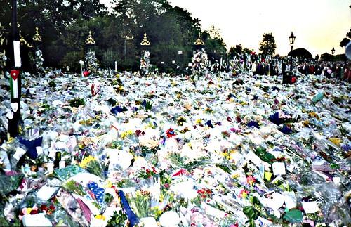 princess diana funeral flowers. Flowers for Princess Diana#39;s