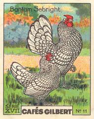 gilbert poules 11