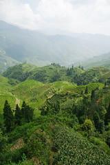 China 3 083 (Flaneur Harris) Tags: china guanxi longji