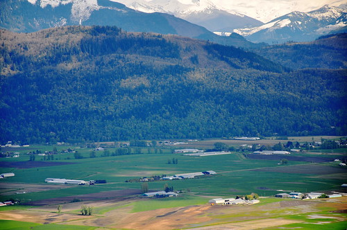 Sumas Prairie from McKee Hill