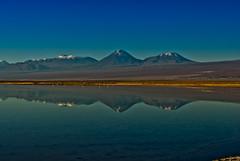 Laguna Chaxa (Toms Leal Elgueda) Tags: chile paisaje sanpedro iiregion reservanacionallosflamencos