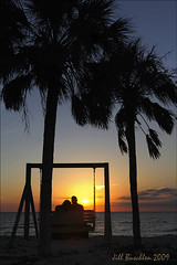Valentine's Day Engagement (Jill's Junk) Tags: sunset engagement bravo florida palmtrees proposal awwwww valentinesday honeymoonisland supershot jillsjunk