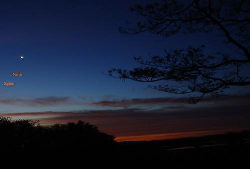 Palo Verde, amanecer, Feb 2009
