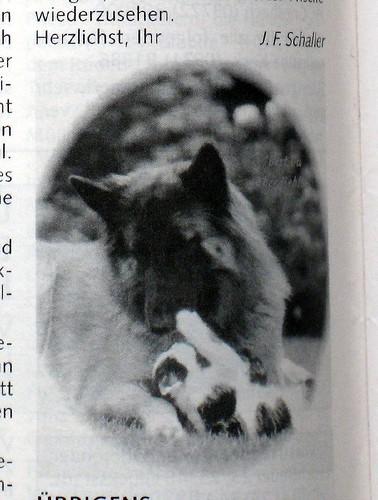 _jpg-Gipsy-und-Felix