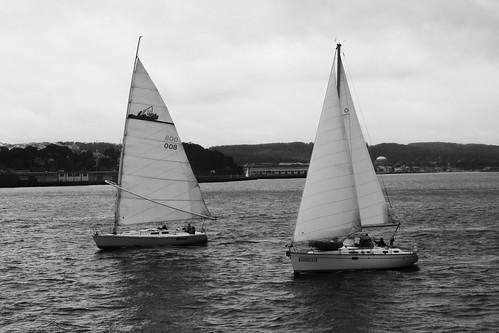 sf sanfrancisco california ca blackandwhite bw water sailboat digital canon boats eos rebel bay san francisco wind prison jail alcatraz therock sailboats xsi 32109