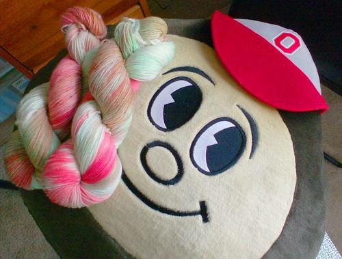 Brutus Buckeye Ohio State University sock yarn