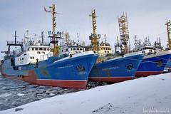 Russian trawlers in Kirkenes (Bozze) Tags: kirkenes trawlers norwayapril2009 wwwoppnahorisonterse russiantrawlers wwwopenhorizonsfinearteu