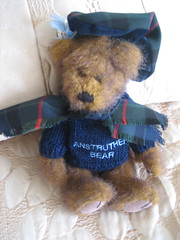 In Our B&B 1: Anstruther Bear