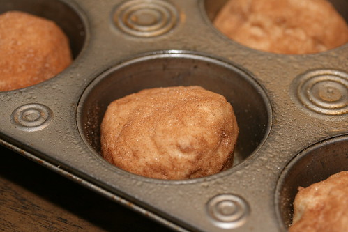 Food Librarian - Snickerdoodle Muffin