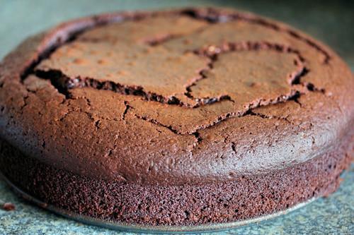 chocolate cake  2197