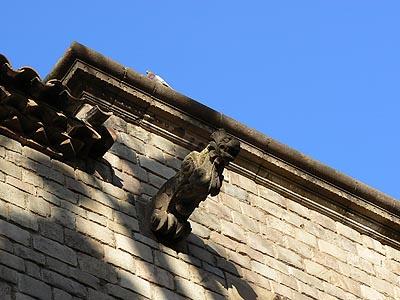 gargouille et pigeon.jpg