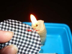 PAP Flor 2 (Ada_Flor) Tags: flores pap floe tecido xadrez acessorios sintetico