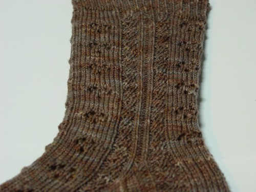 Raining Cats & Dogs Sock Sample
