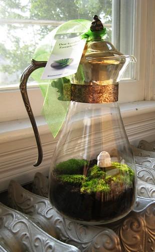 english cottage vintage coffee server moss terrarium