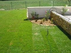garden (wendywj) Tags: thomas villa ttf davinia sernhac