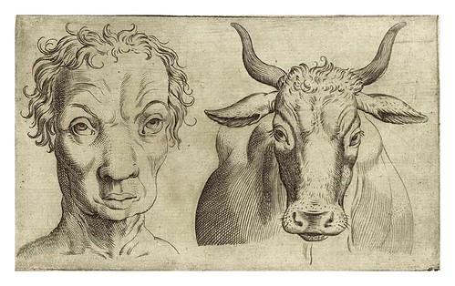 009-De humana physiognomonia- Giambattista della Porta 1586