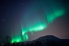 Tanqueray Curtains (jamenpercy) Tags: snow norway arctic northernlights auroraborealis arcticcircle percy tromso troms jamen nothernnorway jamenpercy