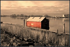 Red Boat Shed (Mark Faviell Photos) Tags: winter red sun river boat bc arm north richmond fave boatshed richmondfraserriver