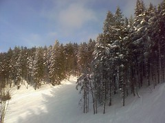 (depone) Tags: nature snowboarding snowboard feldberg
