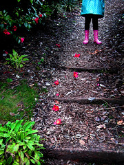 Petals on the path (Christoph Christoph) Tags: uk pink flowers england feet sussex petals child steps explore hiding raincoat wellies bushes interestingness126 i500 adifferentpointofview theworldthroughmyeyes feltlife wakehurstplacesussex