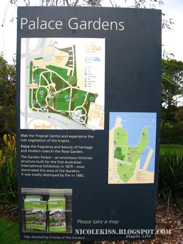 sydney botanical garden map