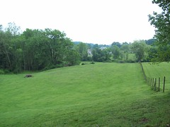 Plenty of grass to cut (mike murtha) Tags: green grass farm murtha mikemurtha murthaspond