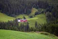 Dlan i juni (Krogen) Tags: norway landscape norge farm norwegen noruega krogen noorwegen noreg trndelag malvik grdsbruk olympusc7070widezoom