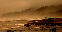 """Cannon Beach, Jan 2009 (luckyonthecliff, Kathy """"Cody"""" Robinson) Tags: ocean winter storm water or cannonbeach fineartphotography landscapebeauty natureinmotion naturespotofgold onlylandskyandseascapes"""