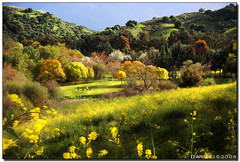 Fall in Spring (Dan T Nhu) Tags: california park fall nature landscape spring fallcolor hill trail springcolor colorphotoaward colorfulnature schabarumpark vosplusbellesphotos dragondaggerphoto