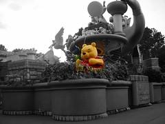 Winnie the...
